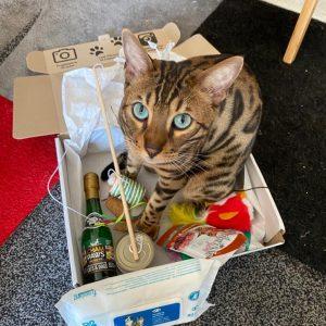 Avem abonament pe 12 luni și am primit până acum 2 pachete. Recomandăm cu drag! Pisicile noastre sunt fascinate la fiecare cutie și sunt foarte mofturoase în general. Felix JPG